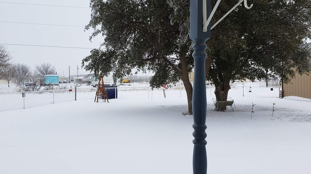 Snowy front yard with snowdrift and trees