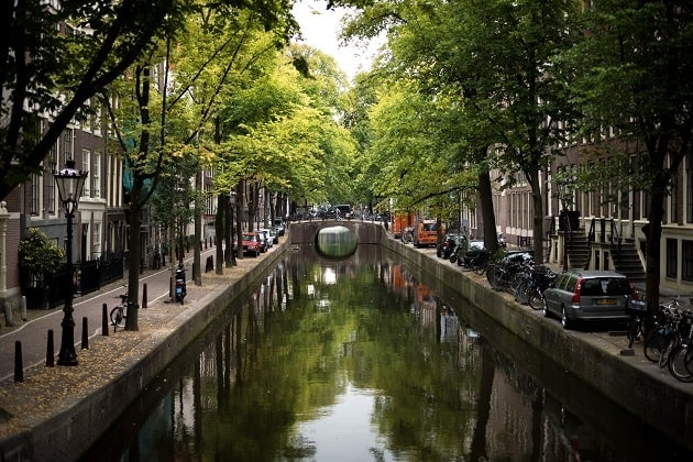 Quiet, tree-lined canal in Amsterdam