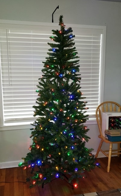 Undecorated tree with lights