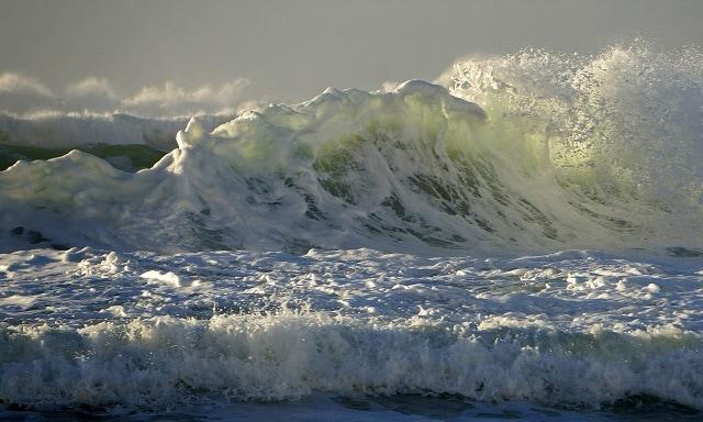 big wave with sun shining through it