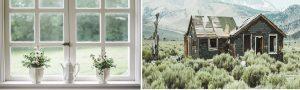 nice white windowpane with white vases versus a rundown house in sagebrush