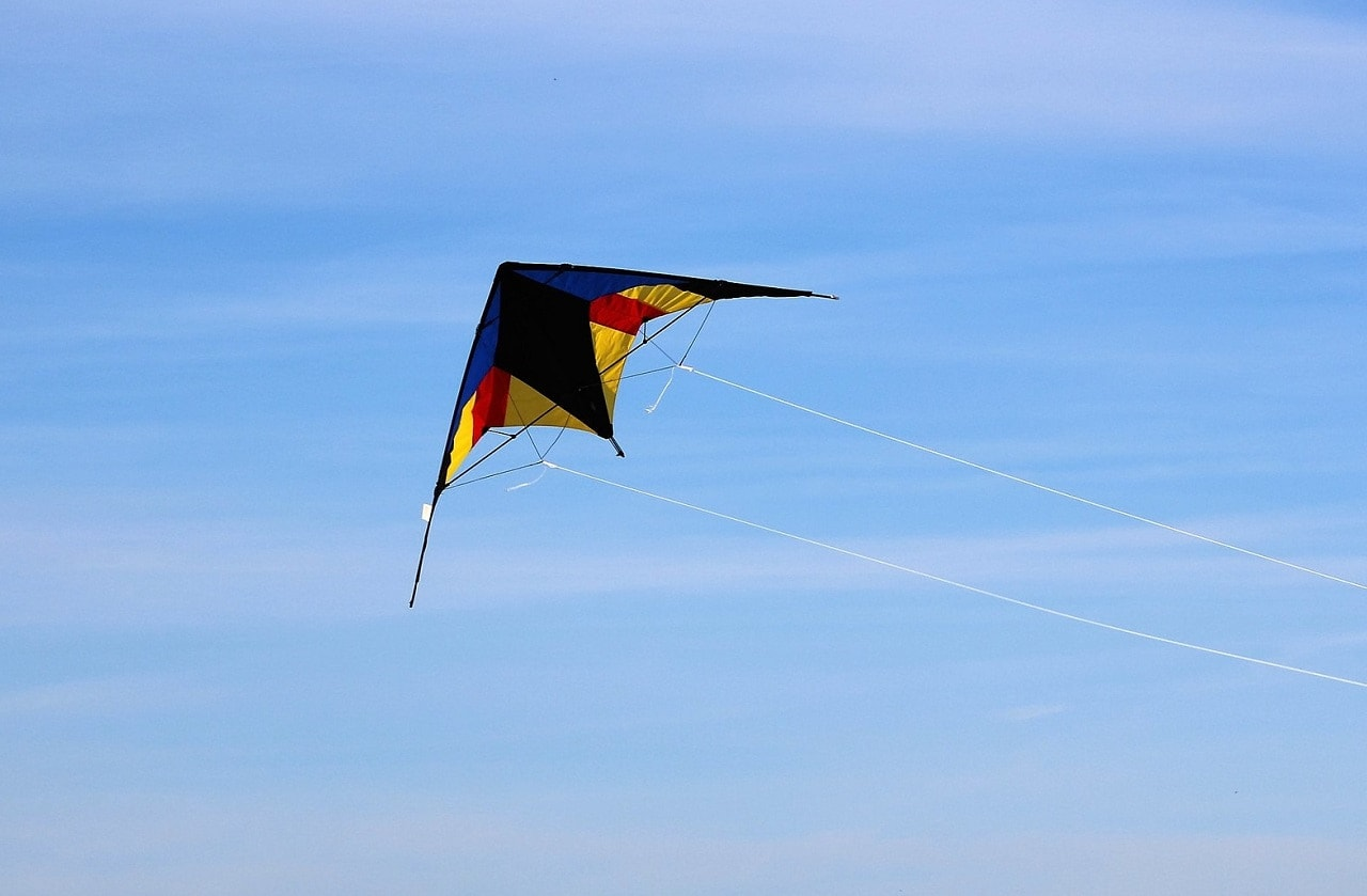 modern trick kite with swept wing shape with two guiding strings