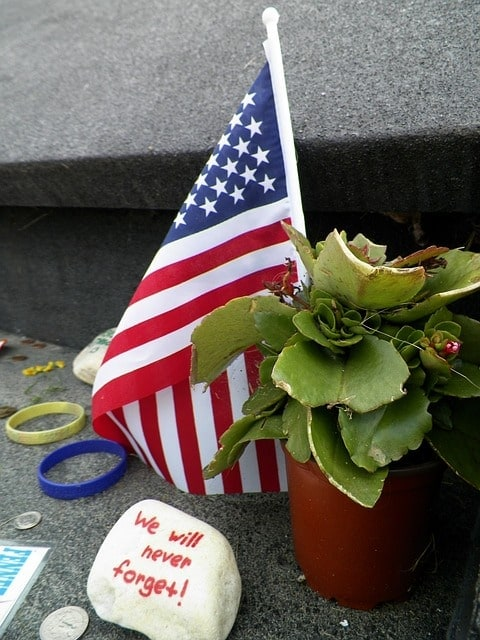 "small flag and plant with painted rock saying ""We will never forget"""