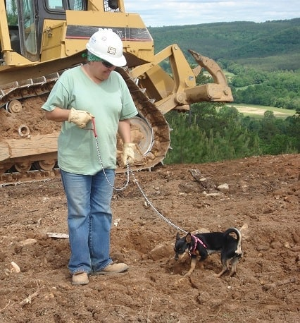 woman in hard hat with small dog on leash at construction site