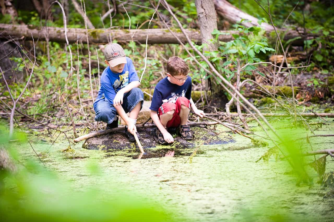 Two boys playing in a woodland creek.